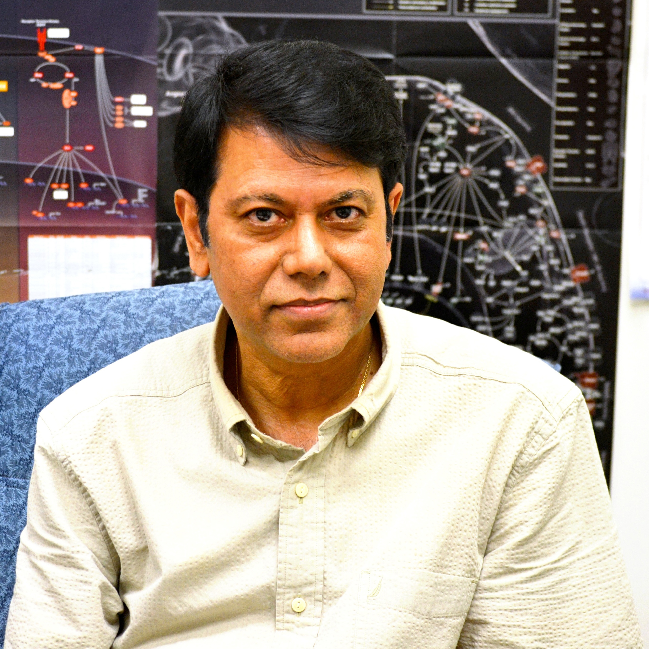 Headshot of Partha Banerjee in his office.